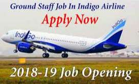 airlines company hiring for ground staff.male and female both require