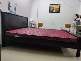 King Size Cot from Royal Oak