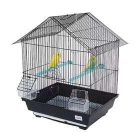 Parrot caze