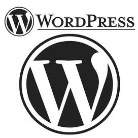 Professional and Experienced Wordpress Developer required