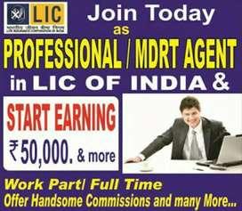 Lic sales adviser