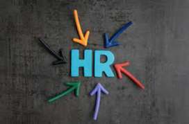 HR - Human Resource manager for company