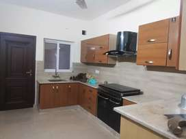 Brend new house for rent