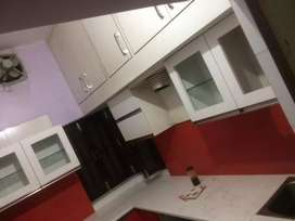Independent ground floor house for rent in sector 10 fr family /office