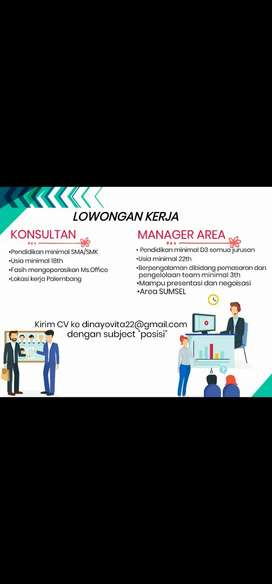 Manager marketing area