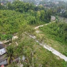 Utara Bantul Kota Lebar 8 Meter, Lingkungan Asri SHM Pekarangan