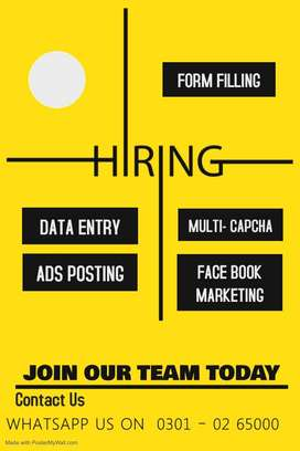 data entry job / best opportunity to earn at home