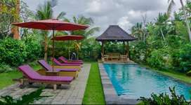 For Rent Guest House 8 Bedrooms with Sharing Pool and Rice Field View