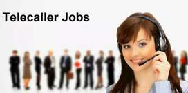 TeleCaller job (Hindi)