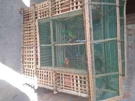 Doublex bird cage