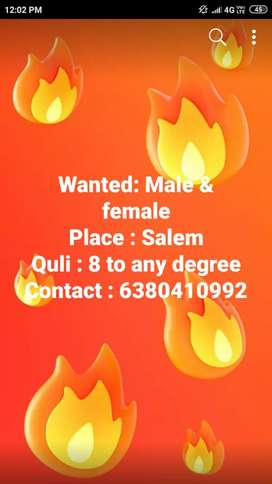 Wanted male and female