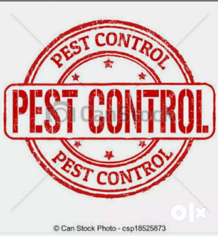 Cockroach bed bugs termite pest control 0