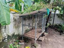 The dog cage (പട്ടിക്കൂട് )
