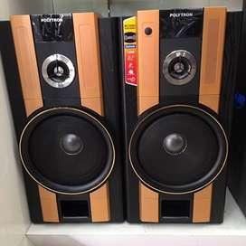 NEW BlueTooth Polytron Active Speaker PAS 62 with Mic Input / Karaoke
