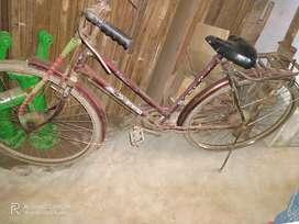 Arpit cycle