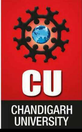 Marketing Executive for Chandigarh University