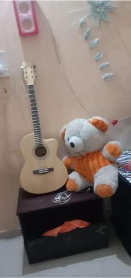 New gitar only