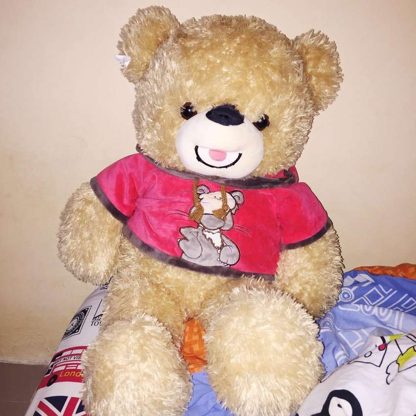 Teddy bear coklat 0