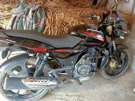 Tip top condition pulse 150cc