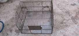 Bird cage (steel)