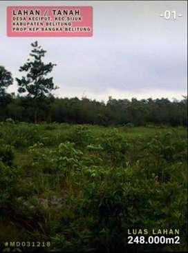 TANAH STRATEGIS TANJUNG TINGGI Belitung 248.000m2 24.8 Hektar