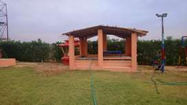 Luxury farm  house available for rent for buking call now