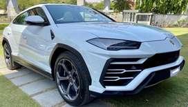 Lamborghini Others, 2020, Petrol