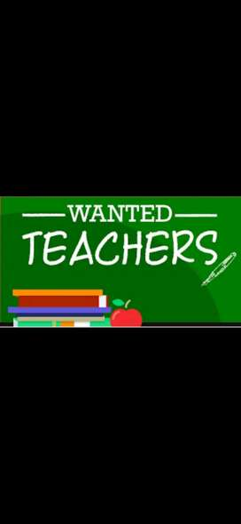 Wanted  primary teachers