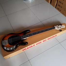 Gitar bass musicman sundburs sting ray