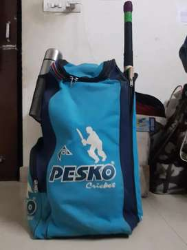 Pesko cricket Kit... 4 months old.Original price=Rs.1000