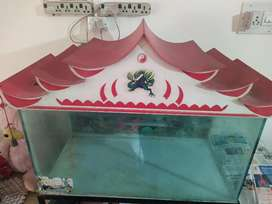 Aquarium tank 2 year old with top,stand and accessories