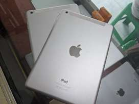 iPad mini 2 (Wiffi Cell)