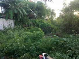 THANHAVELU DTPSITE 5.01 CENT FOR SALE