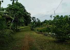 Jual tanah di Patumbak