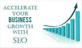 Professional Digital Marketing SEO With SMO Service At affordable cost