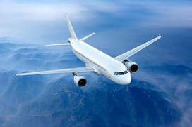 AIRLINES PROVIDE GREAT JOB NEEDED PERSIONS HIRING FOR AIRLINES JOB APP