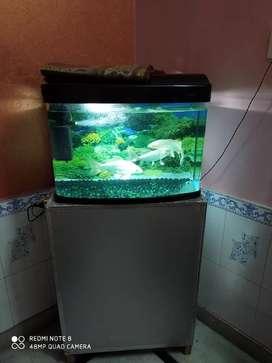 Aquarium new condition