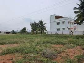 Plot no 81-82 உஞ்சனை குட்டிகாபாளையம்