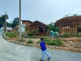 Tanah Kavling Villa Kebun Bonus Bibit Pohon Leci di Bogor