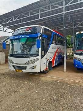 Jual bus pariwisata mitsubishi canter 136ps 2017