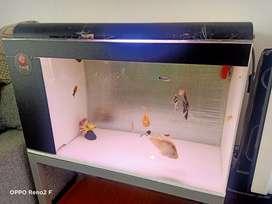 Jual Murah akuarium aquarium Sistem Bio 80x40x45
