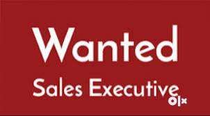 Looking for Sales EXECUTIVES In Hyderabad 0