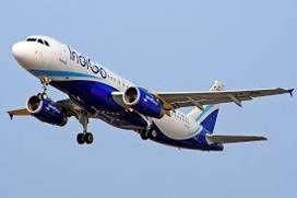 Urgent hiring for groundstaff,cashier,flight attendant Indigo airlines