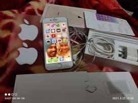 Apple 8/64