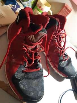Sepatu Basket D Rose 773 II