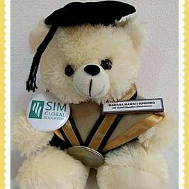 Boneka Wisuda | Boneka Wisuda Teddy Bear | Boneka Teddy Bear Jumbo ID8