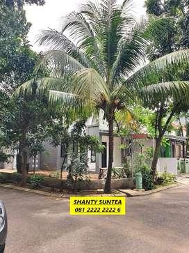 Rumah Minimalis HOT SALE 1 Lantai di Mahagoni Park, WD-3456-M