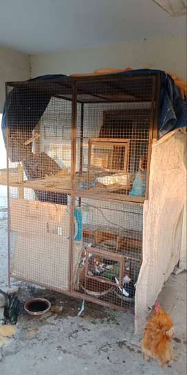 Pinjra For Sale (Cage) Exchange Possible With AC