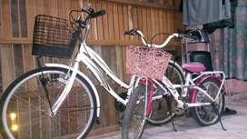 Jual Sepeda anak dan Dewasa Wim Cycle