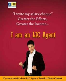 Lic Insurance Agent (LIC Agent)